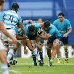 Los Teros Mundial de Rugby 2023